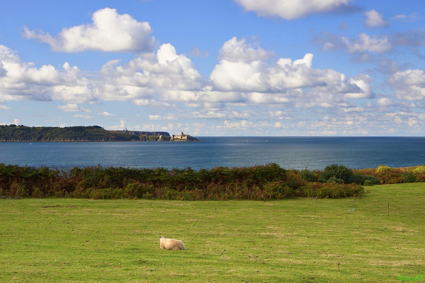 Vue sur la baie de la Fresnaye et le Fort La Latte - la Roche Goyon - depuis le sémaphore de St Cast le Guildo