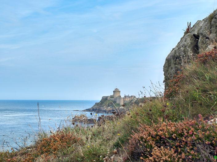 nature bretonne - La lande et le Fort la Latte - la Roche Goyon