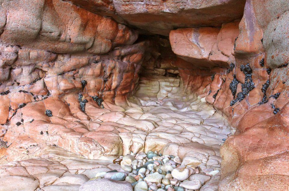 Visite des grottes de la côte sauvage du Cap Fréhel
