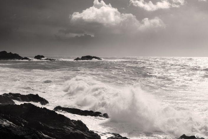 mer agitée en noir et blanc