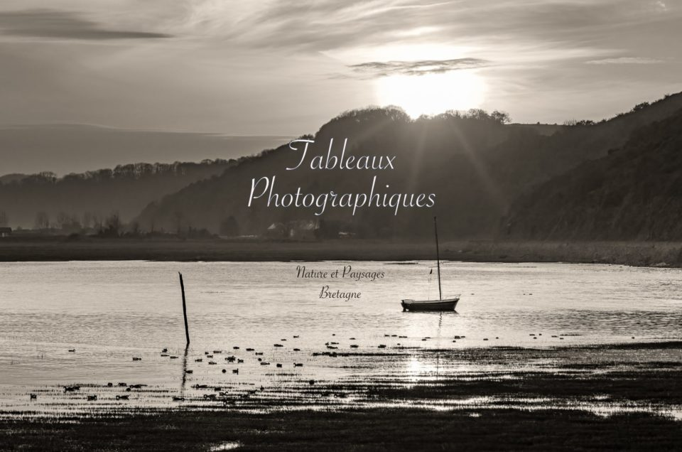 Impressions Tableaux Photographiques
