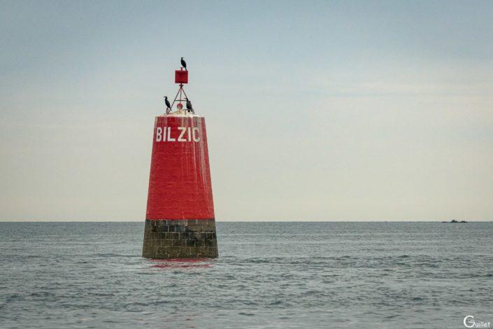 découverte des 7 iles - Balise de sortie de Port de Perros Guirec