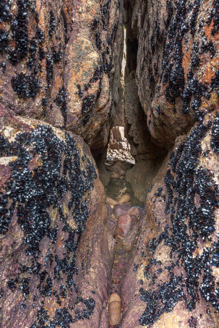Grotte du Cap 25