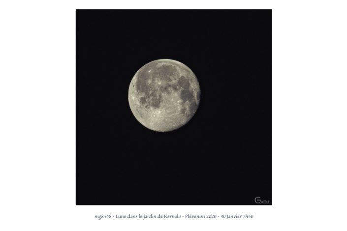 mg8448 Lune dans le jardin de Kernalo
