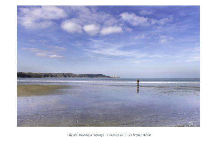nal2504 baie de la Fresnaye