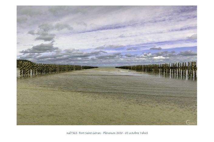 nal7363 bouchots dans la baie de la Fresnaye