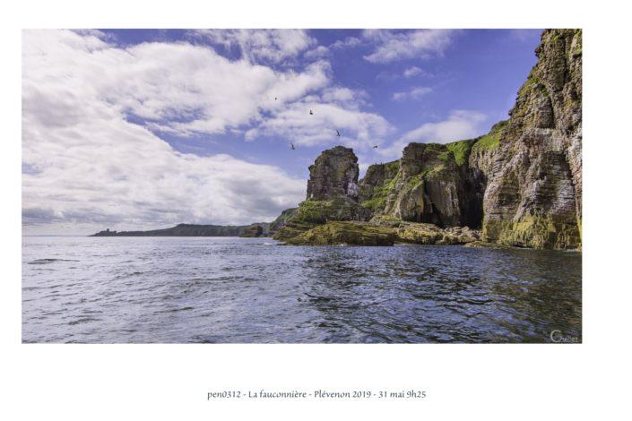 pen0312 la Fauconnière au Cap Fréhel