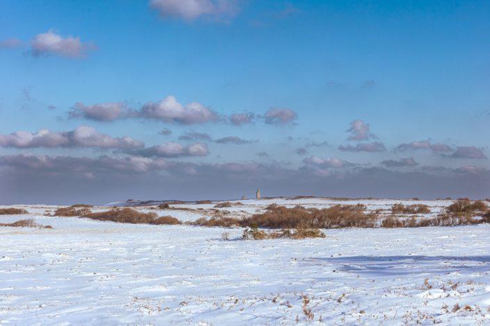 Lande du Cap Fréhel sous la neige