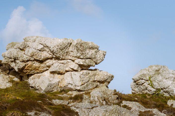 Crozon : Chien du Cap rocheux de la pointe de Pen-Hir